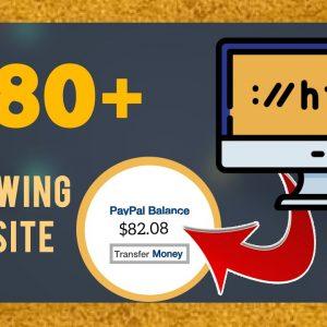 Get Paid $80+ Reviewing A Website | Make Money Online 2021 | Wesley Virgin